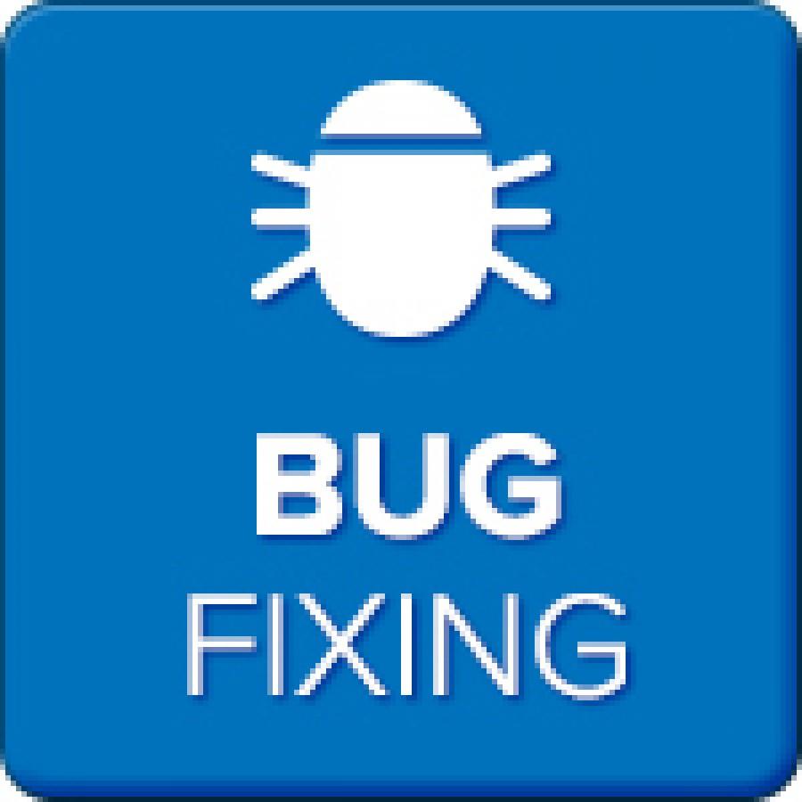 bug-fixing-900x900