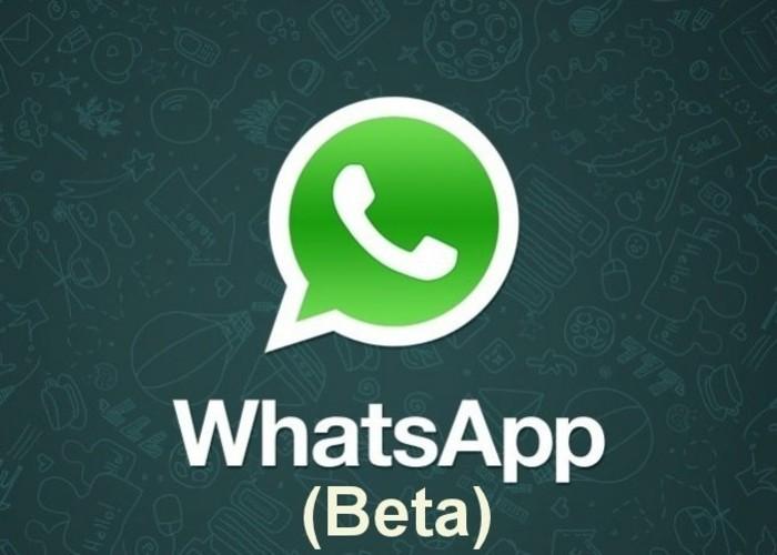 WhatsApp-Beta1