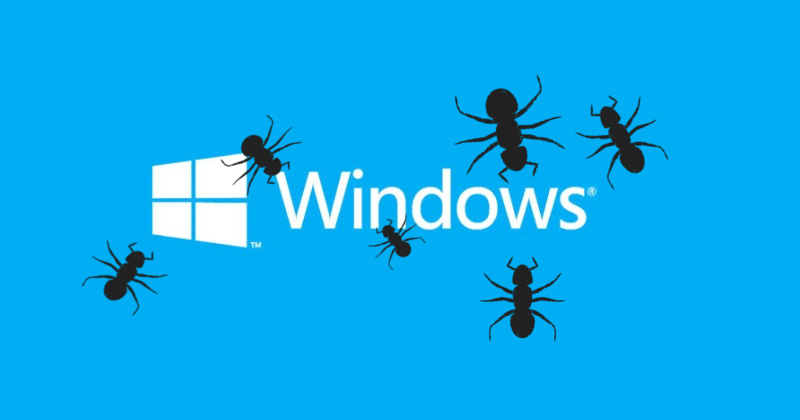 windows-bugs