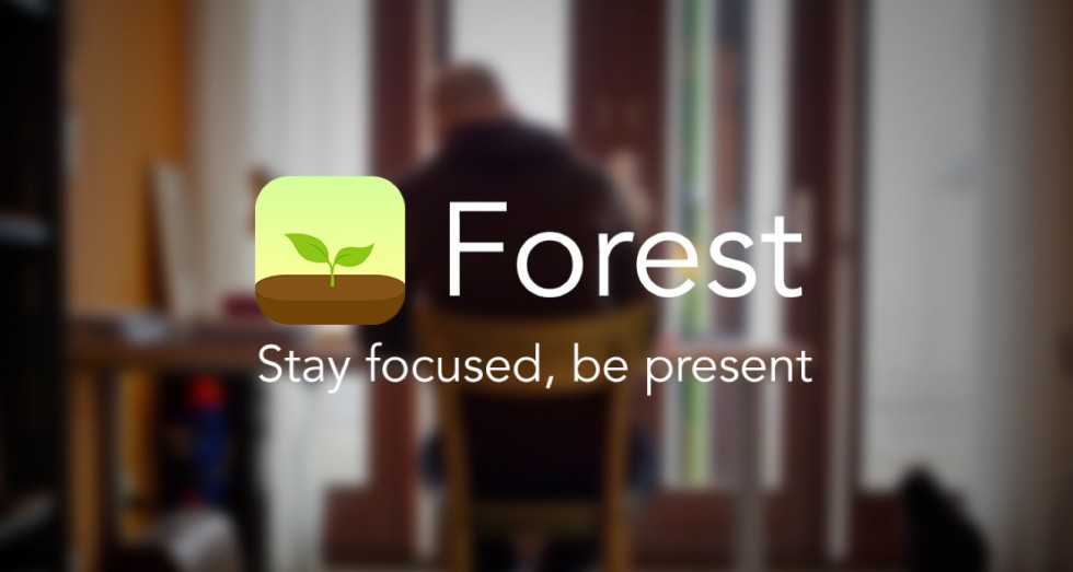 forest-stay-focused-be-present-app