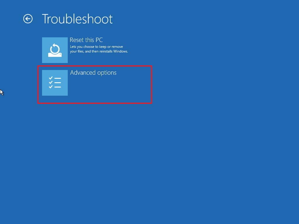 troubleshoot-advanced-options2-1.jpg