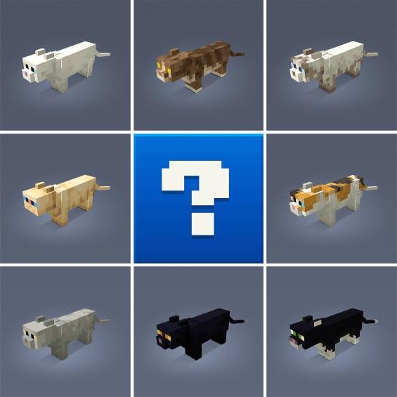 Für das kommende Update hat Mojang einen Wettbewerb ausgerufen, der einem Fan die Chance gibt, seine eigene Katze in Minecraft zu verewigen.